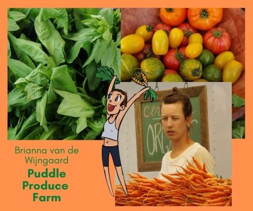 CDFMA puddle produce farm